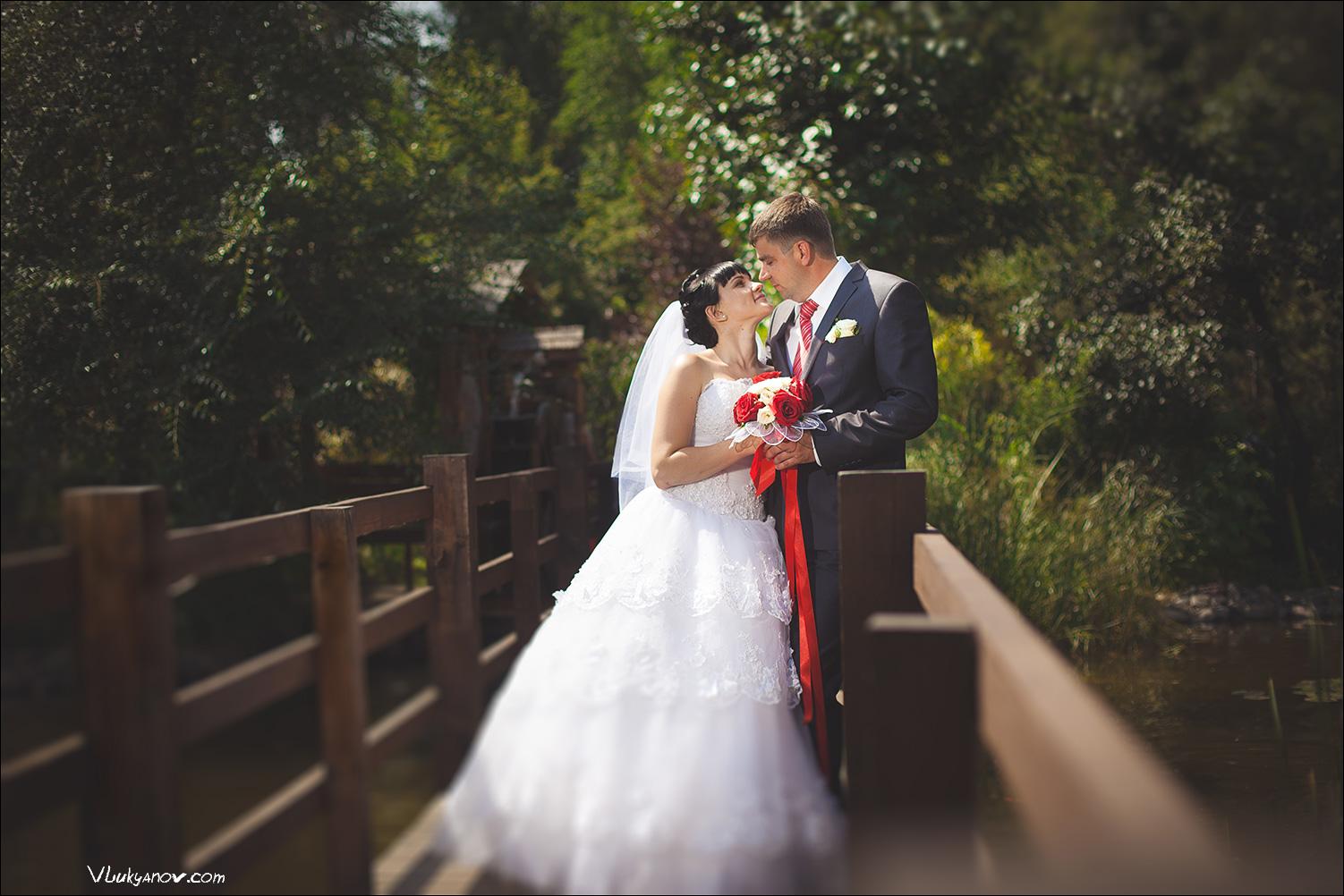 Фотограф, Владимир Лукьянов, Свадьба, Абакан