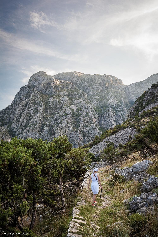 Балканы, Котор, Черногория, Владимир Лукьянов, Фотограф