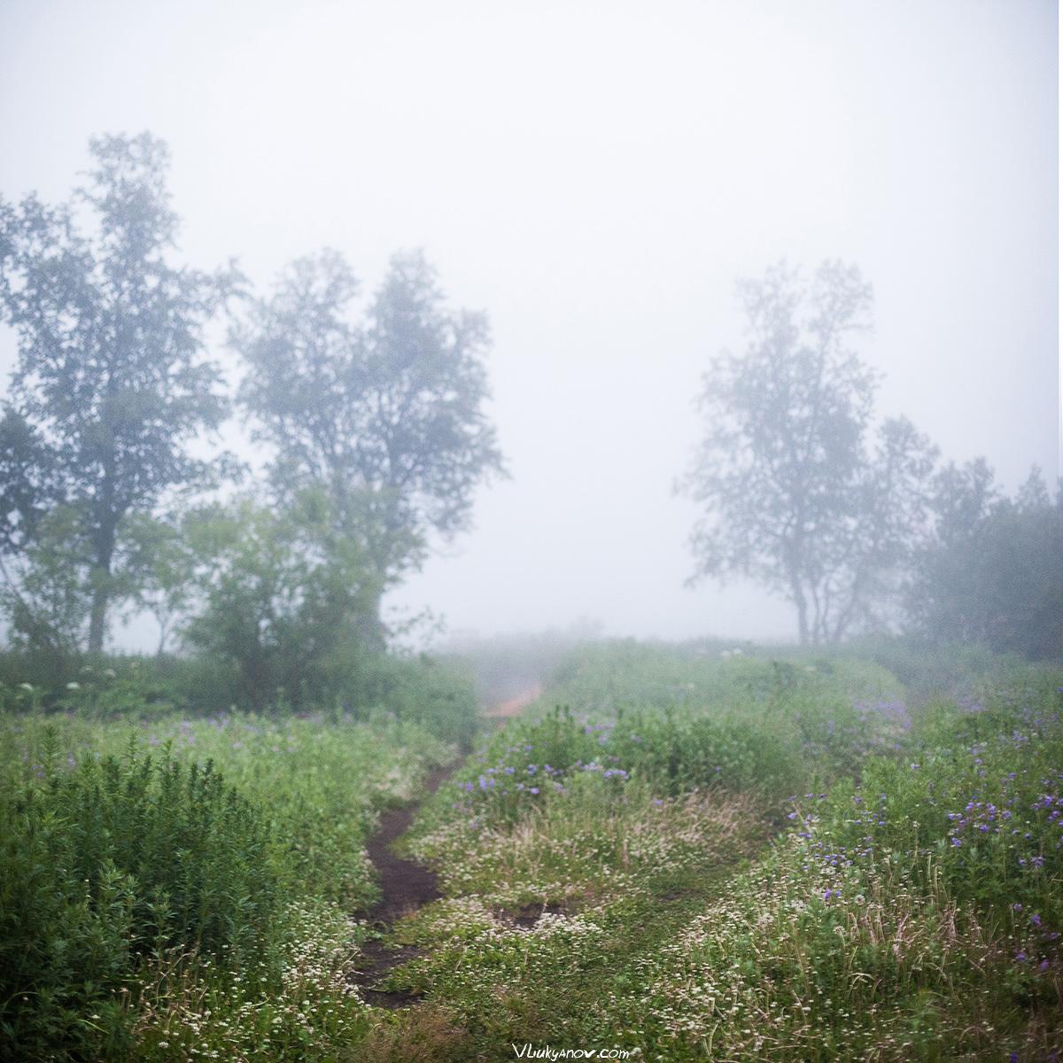 Владимир Лукьянов, Фотограф, Россия, Путешествие, поход, природа, Камчатка, горы